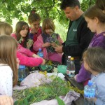 milogosce-aktivnosti-za-decu-seoski-turizam-11