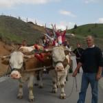 milogosce-aktivnosti-za-decu-seoski-turizam-13