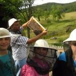 milogosce-aktivnosti-za-decu-seoski-turizam-29