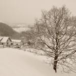 milogosce-seoski-turizam-okolina_02